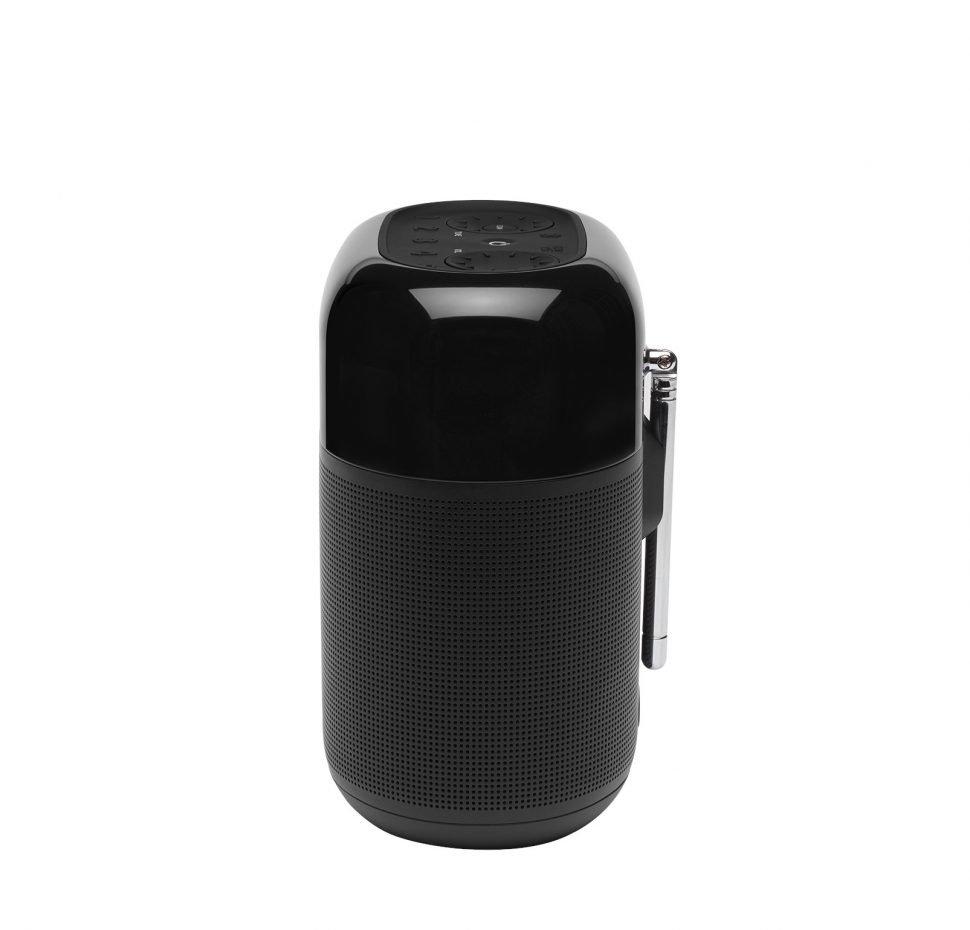 Tuner XL Bluetooth Speaker with DAB/FM Radio, Waterproof IPX7