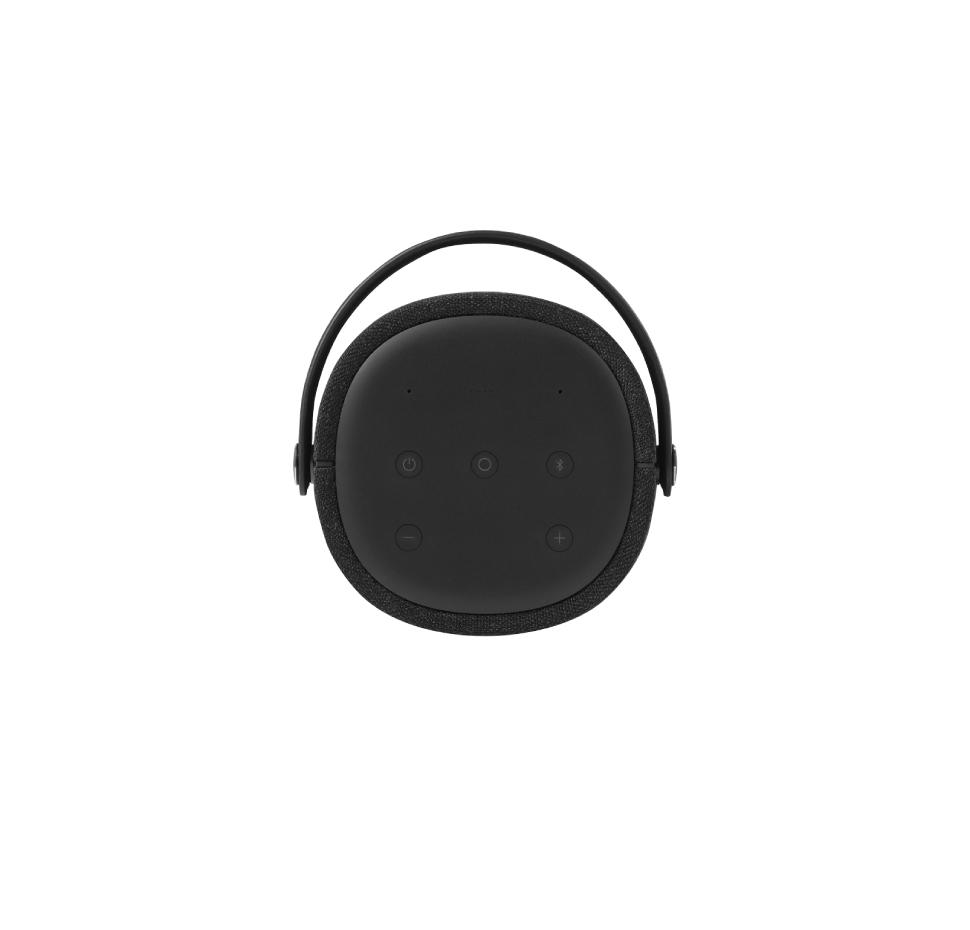 Citation 200, Voice-activated Portable speaker, Google Assistant